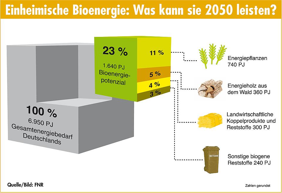 bioenergie energie die nachw chst energieportal. Black Bedroom Furniture Sets. Home Design Ideas